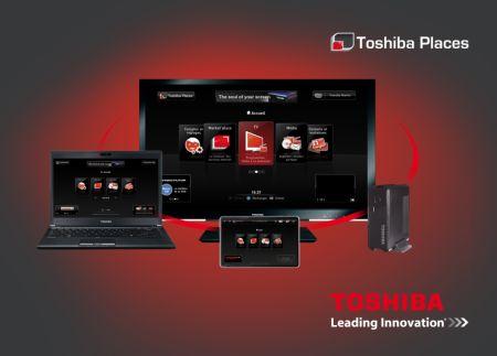 Netgem_multifunction_adapter_Toshiba_Places
